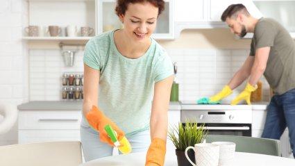 majapidamistööd